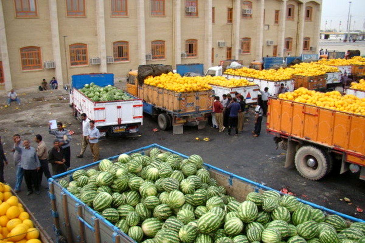 برخیها اقدام به صادرات فلهای میوه میکنند/ ممنوعیت صادرات کیوی تا ۱۵ مهر